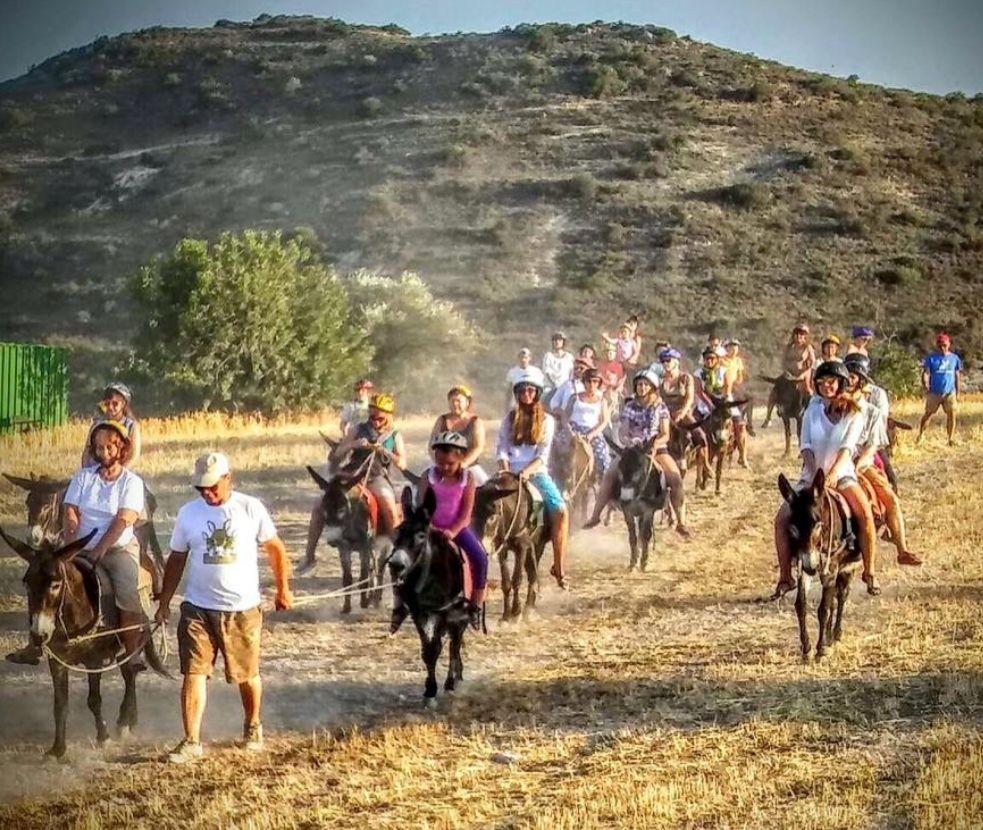 Сафари на Ослах по Кипру