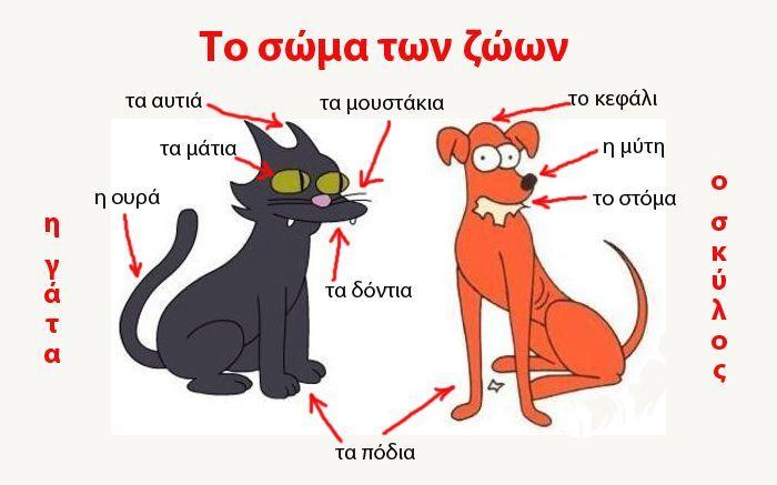 Русско-греческий словарь - Части тела животных