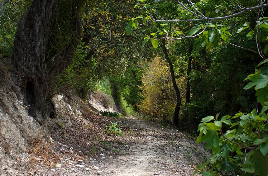 Природная тропа Тримиклини